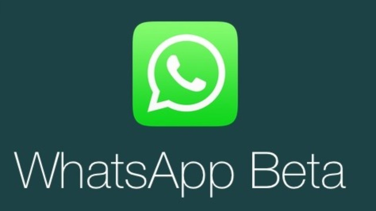 WhatsApp Bêta